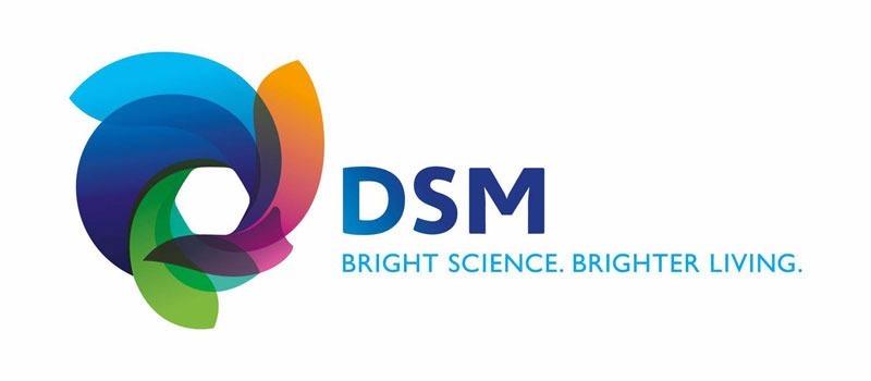 DSM - Parceiros
